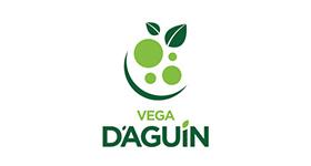 Vega de Aguin