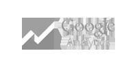 googleAnalitycs